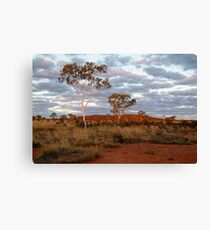 Sunset Ghost Gums,Batton Hill, North Simpson Desert Canvas Print