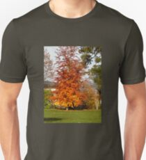 Herbstlaub Unisex T-Shirt