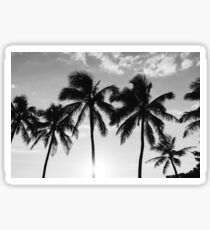 Hawaiian Palms III Sticker