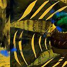 Among Beaks by Gabriele Maurus
