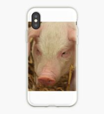 Nettes Ferkel iPhone-Hülle & Cover