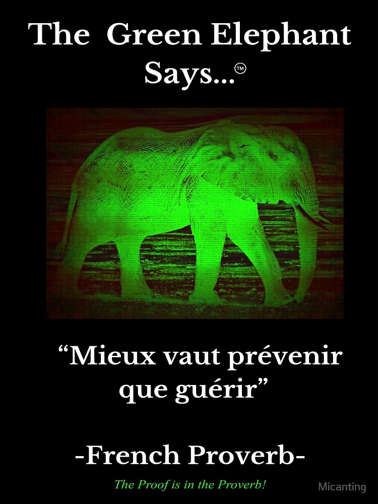 """French Proverb """"It is better to prevent than to heal""""  by Micanting"""