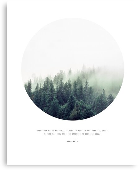 Forest Quote By John Muir Metal Prints By Nordikart Redbubble