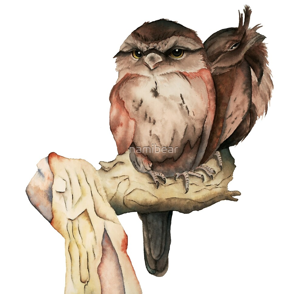Owl Siblings Watercolor Painting by namibear