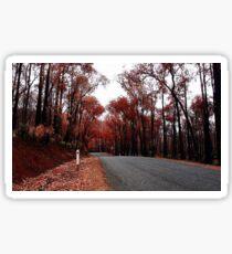 Autumn Drive Sticker