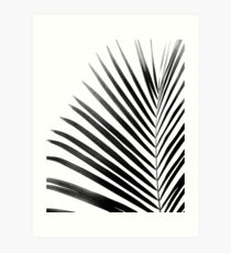 PALM LEAF Black & White Art Print