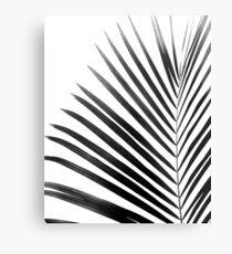 PALM LEAF Black & White Metal Print