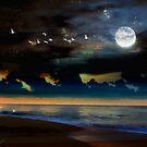 Noche en la Playa by Daniela M. Casalla