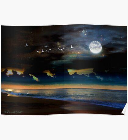 Noche en la Playa Poster