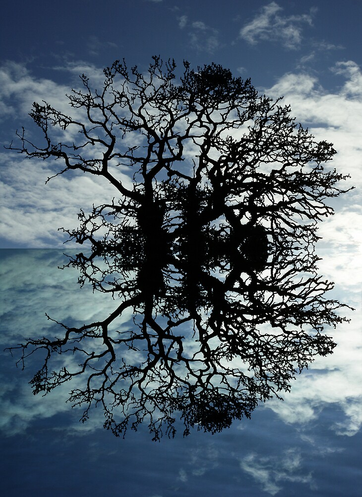 TREE OF LIFE by NART