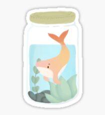 Whale Jar (Jhale) Sticker