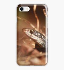 Black racer snake iPhone Case/Skin