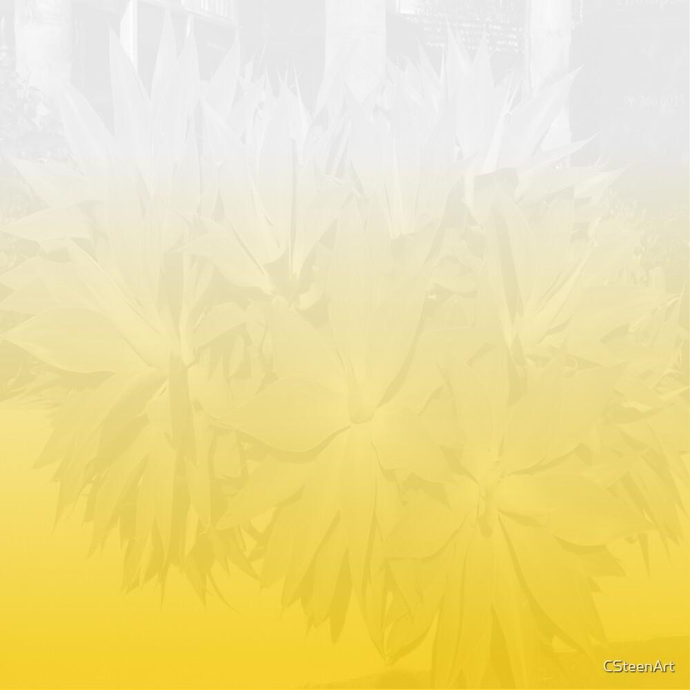 Foliage Orange & White DP170624b by Cyndi Steen