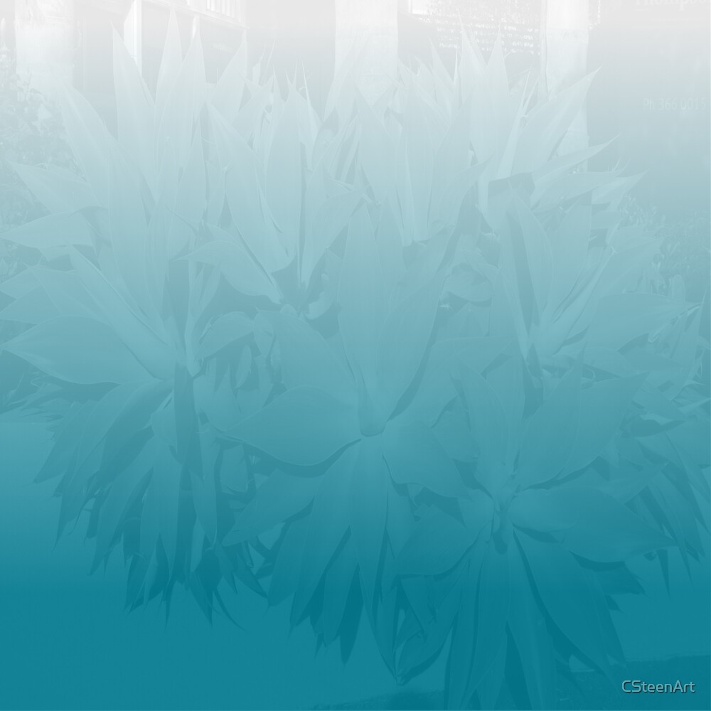 Foliage Turquoise & White DP170624d by Cyndi Steen
