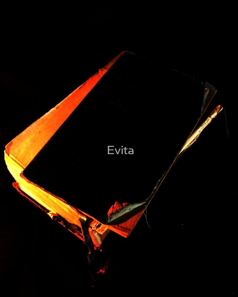 Needs A Bit Of TLC by Evita