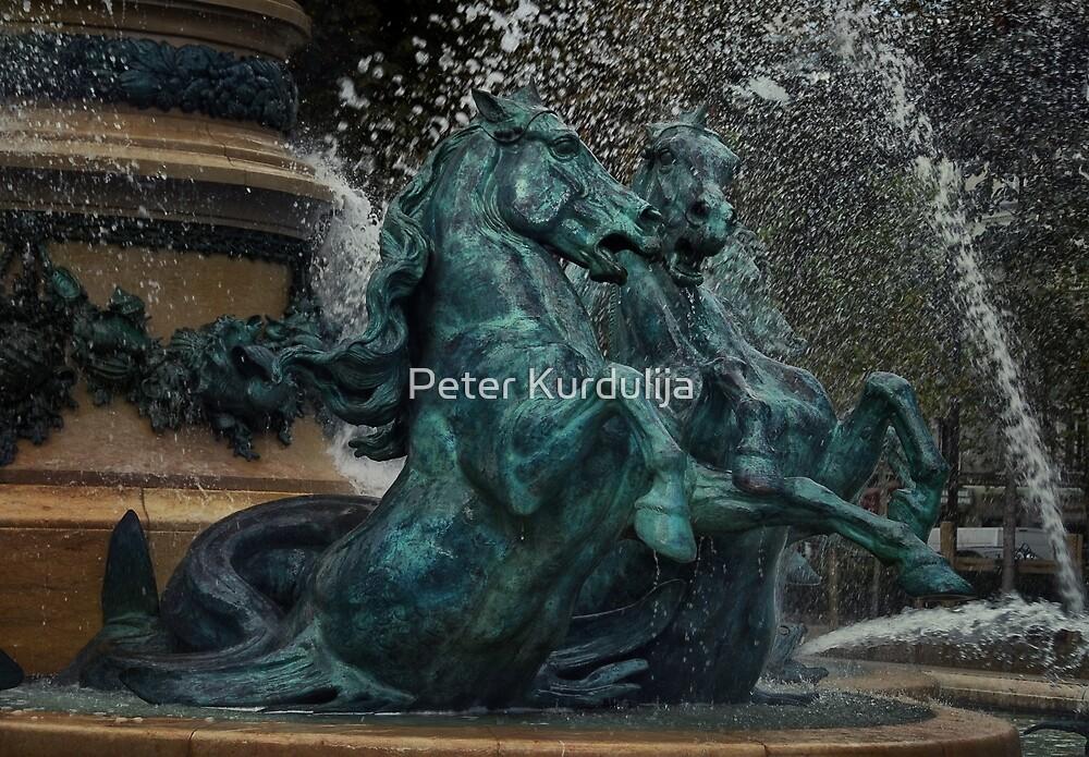 Going Wild in Paris by Peter Kurdulija