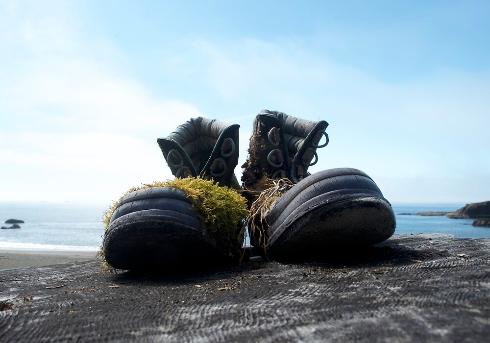 Lost Shoes by Katia Lubchenko