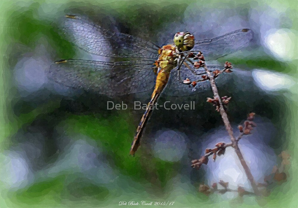 Young Meadowhawk Dragon on a Lilac Tree - Watercolor Effect by Deb  Badt-Covell