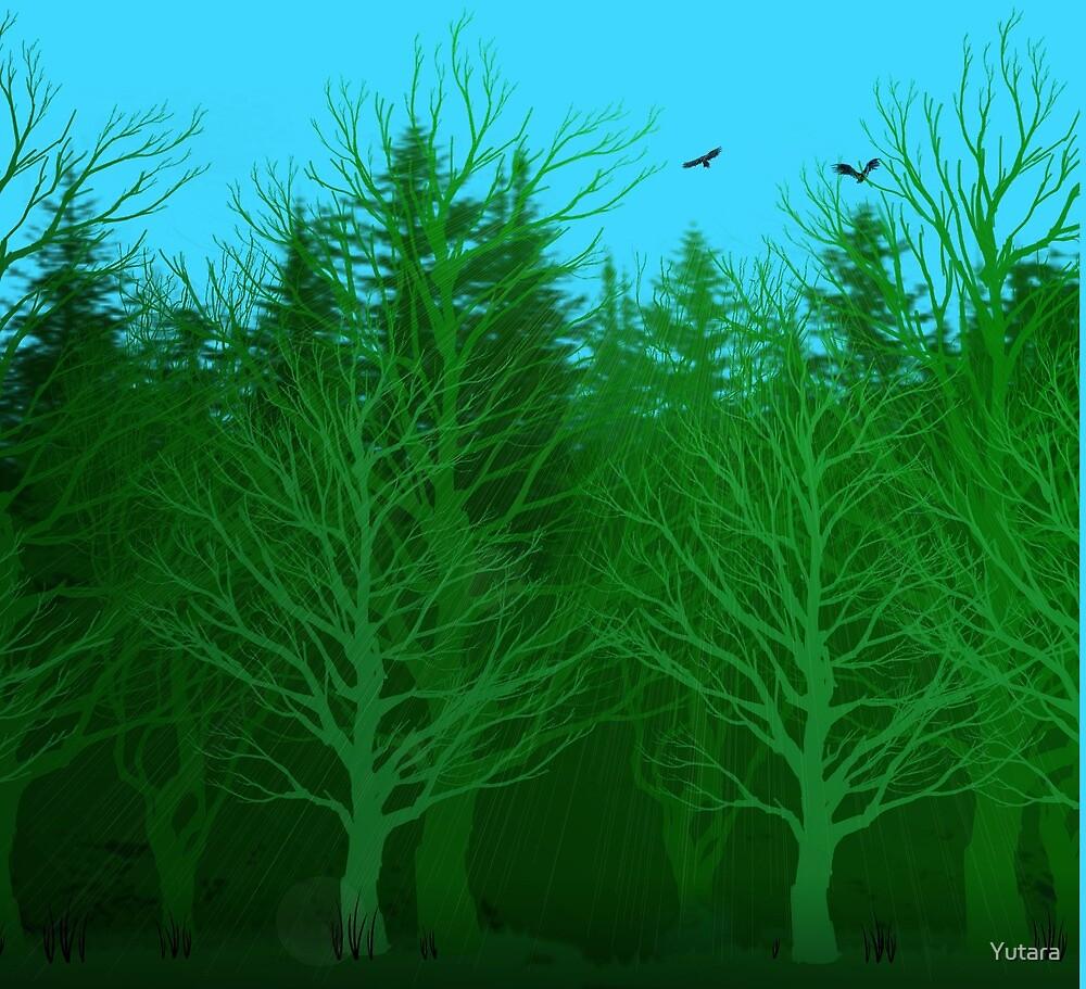 Forest by Yutara