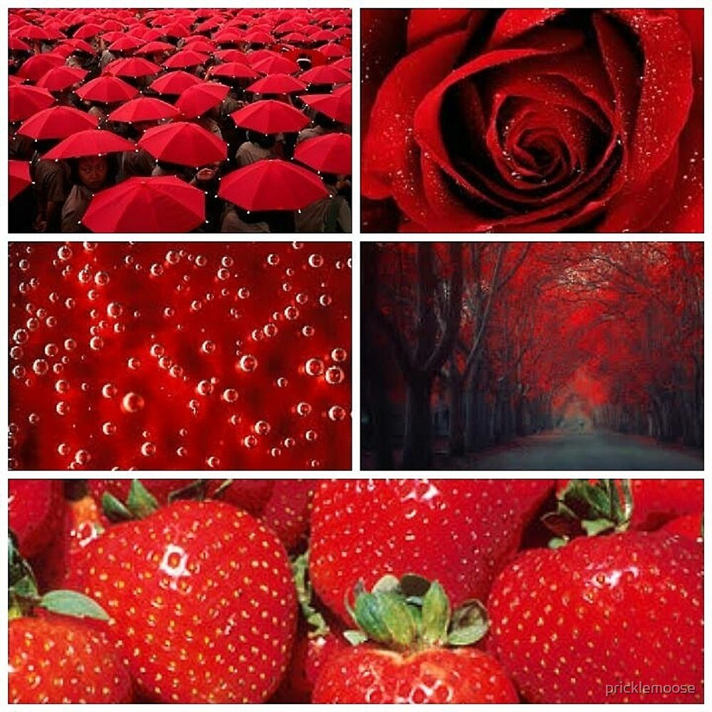 Red Aestheic by pricklemoose