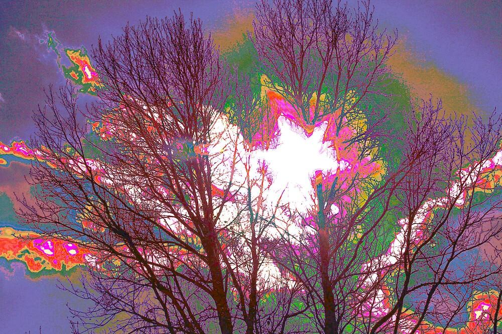 sun star by mel1forjon