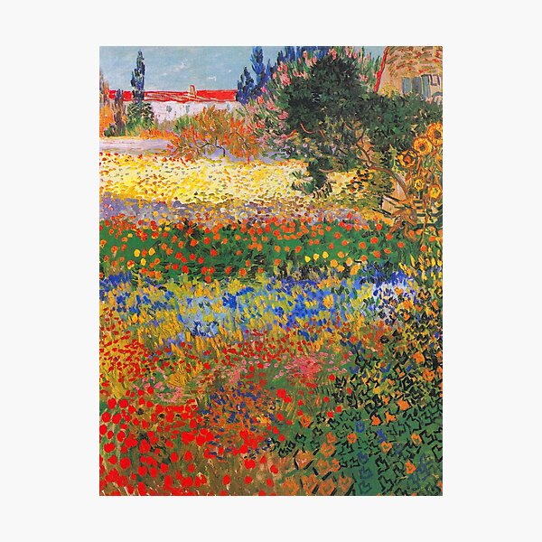 Flower Garden Painting by Vincent Van Gogh Photographic Print