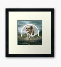 aegis | wolf Framed Print