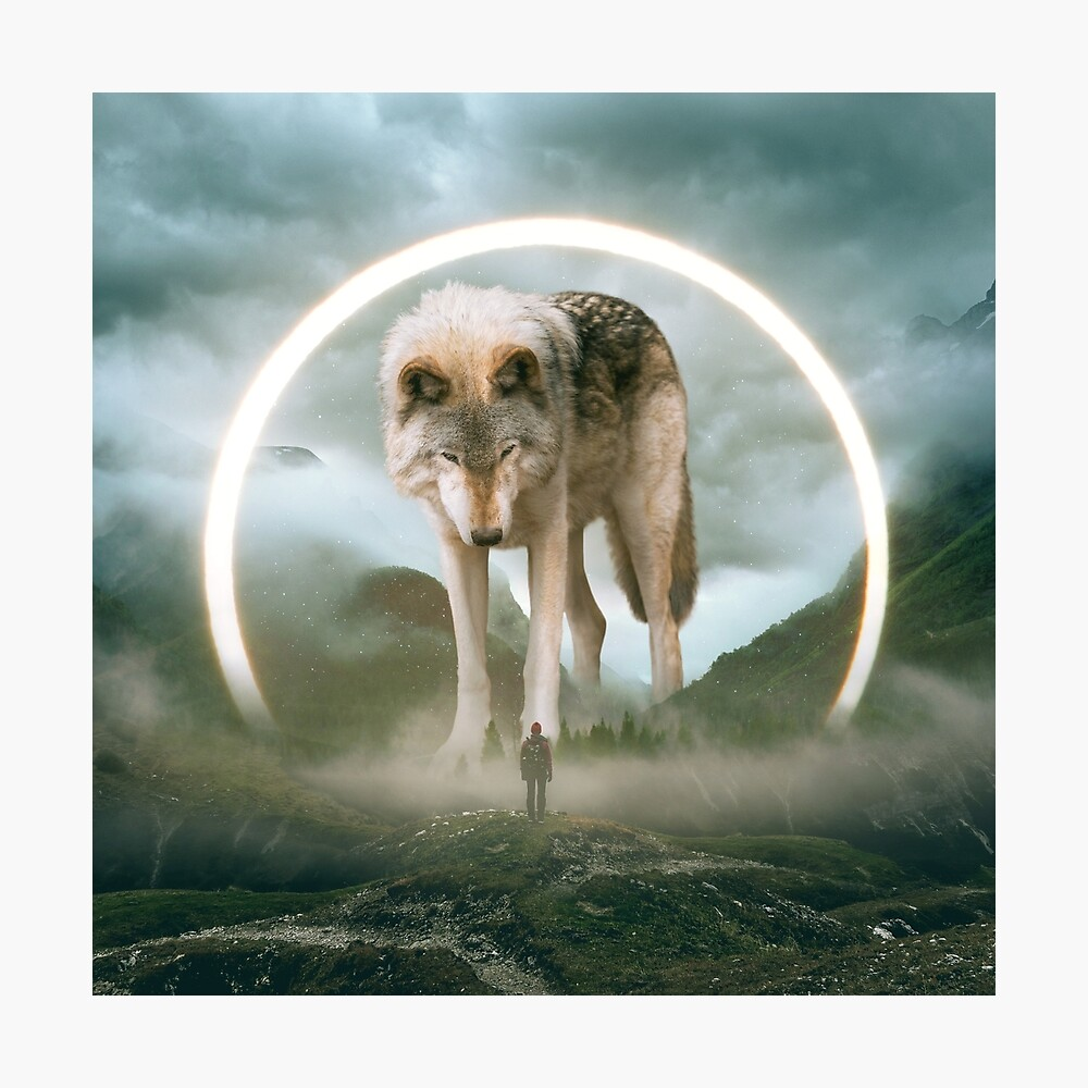 aegis | wolf Photographic Print