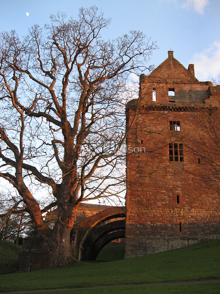 Balustrade at the side of Linlithgow Palace by Jackie Wilson