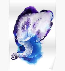 Elephant head.  Poster