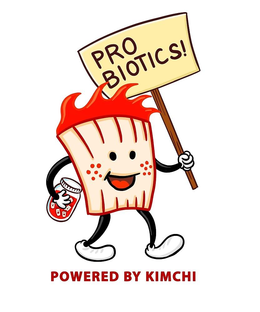 Kimchi Probiotic Korean Food by jinsworld