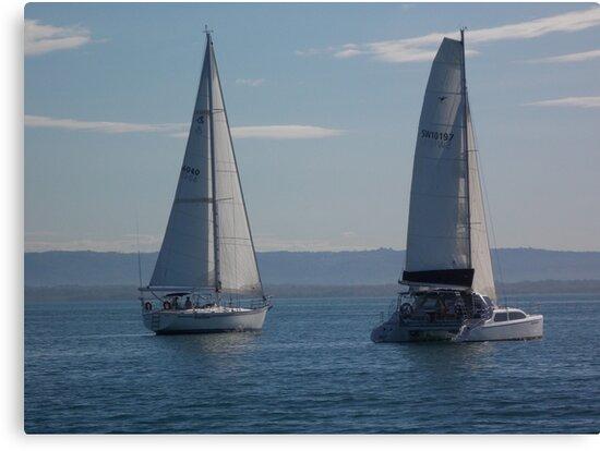 Neck n' Neck by sailgirl