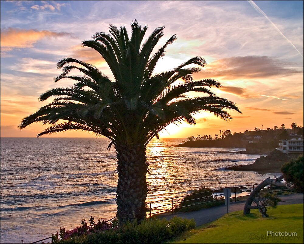 Laguna Sunset by Photobum
