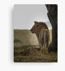 Ruler of the Plains Canvas Print