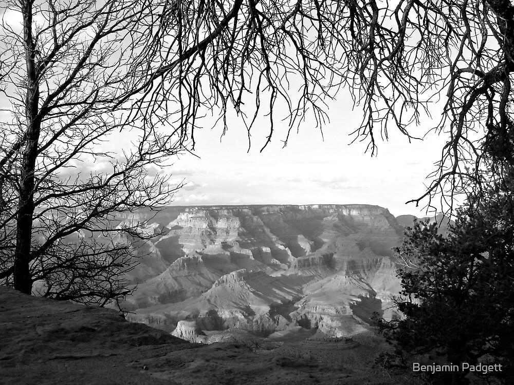 Grand Canyon Vista No. 6 by Benjamin Padgett