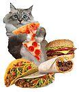 Pizza Taco Burger Cat by heARTcart