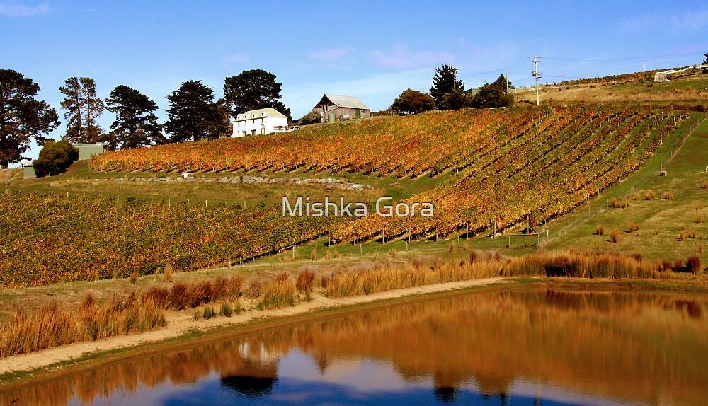 Harvest Time by Mishka Gora