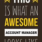 ACCOUNT MANAGER AWESOME LOOK LIKE by minhthien