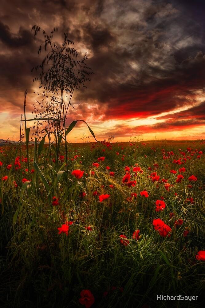 Remembrance Dream by RichardSayer