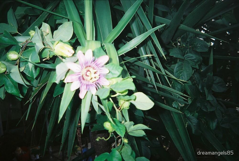 flower by dreamangels85
