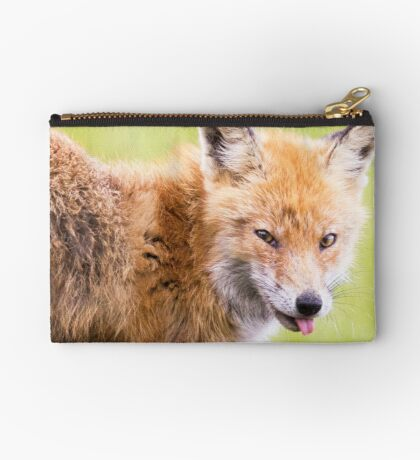 Red Fox Studio Pouch