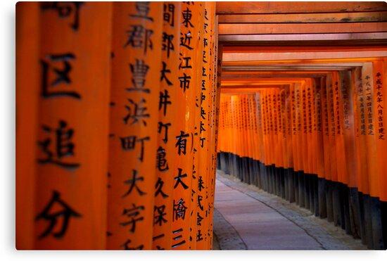 Tori Gates - Fushimi Inari Shrine by Matt  Streatfeild