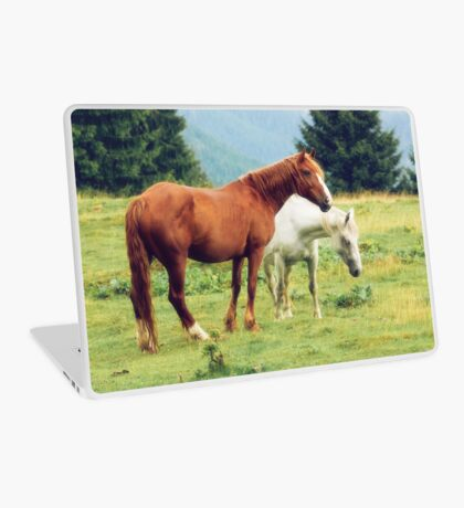 Romanian horses Laptop Skin
