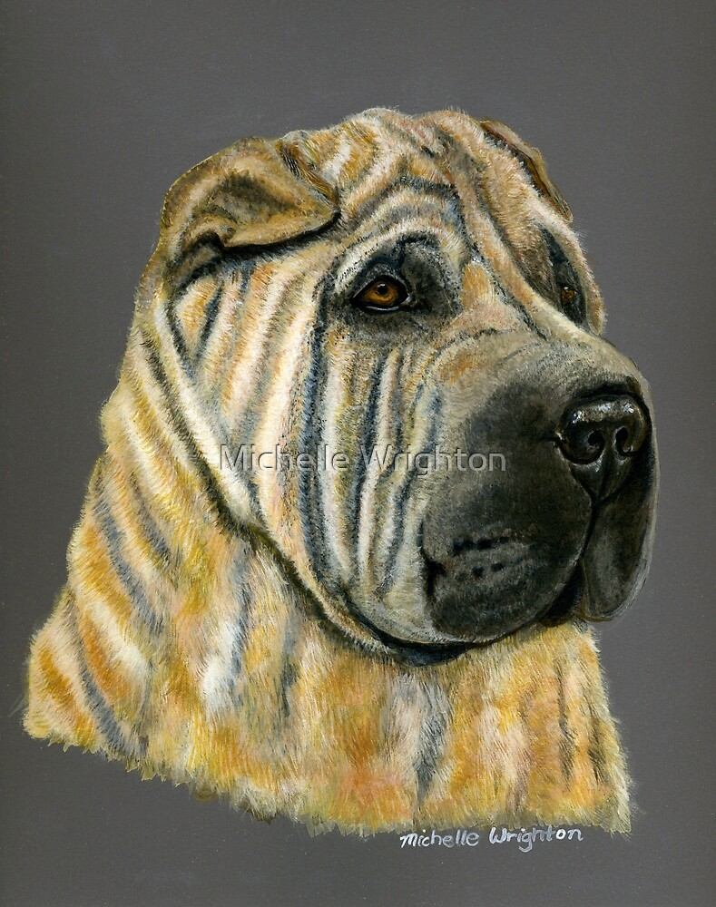 Kruger - Shar-Pei Painting by Michelle Wrighton