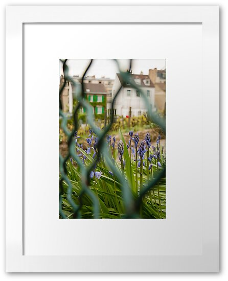 Garden Outskirts by k8andco