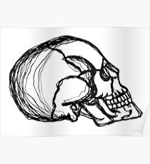 Continuous line skull pen drawing Poster