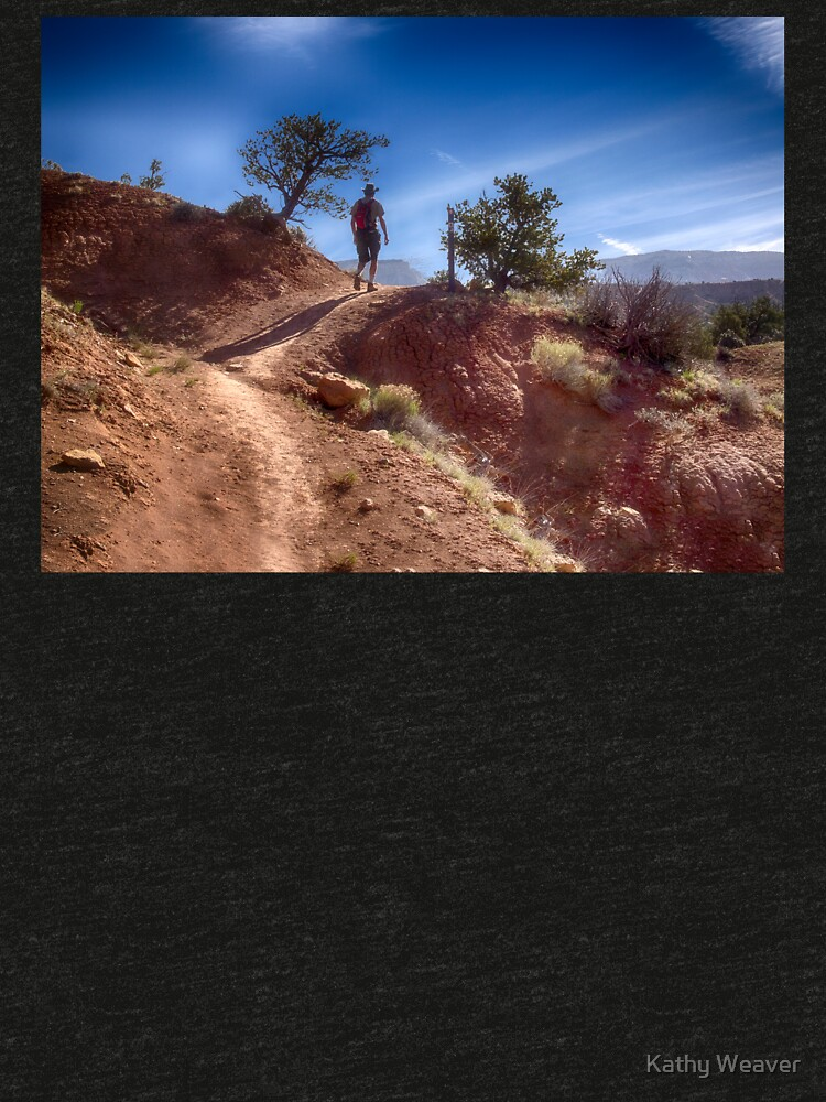 The Hiker - Kodachrome Basin State Park - Utah by kdxweaver