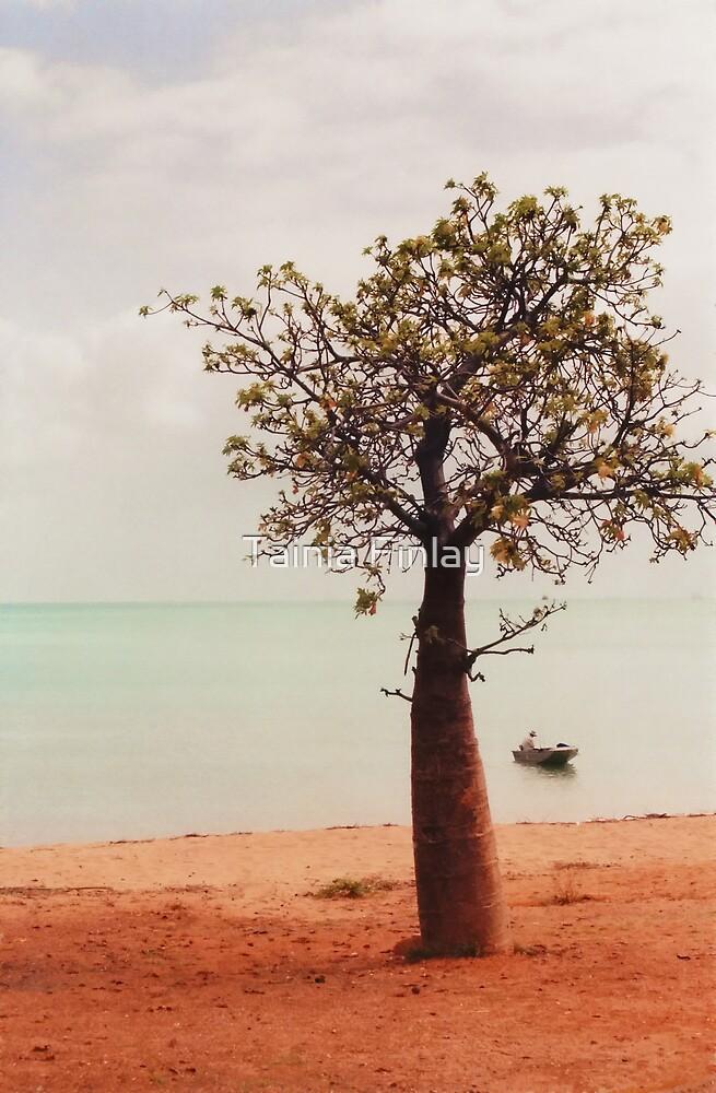 Boab Tree by Tainia Finlay
