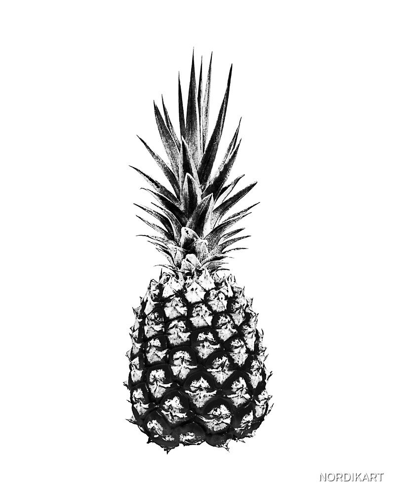 PINEAPPLE Black & White by NORDIKART