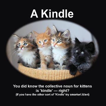 A Kindle by JChapman1729